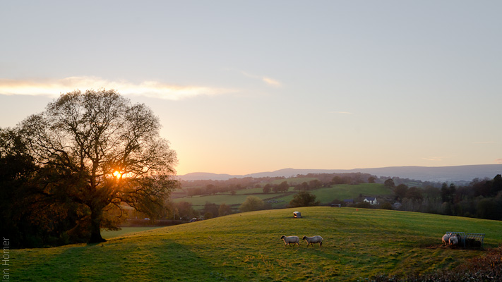 Sunset pastoral scene in Wales.